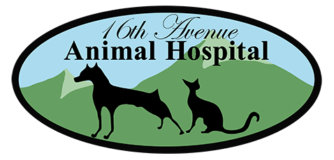 Logo for 16th Avenue Animal Hospital Markham, Ontario